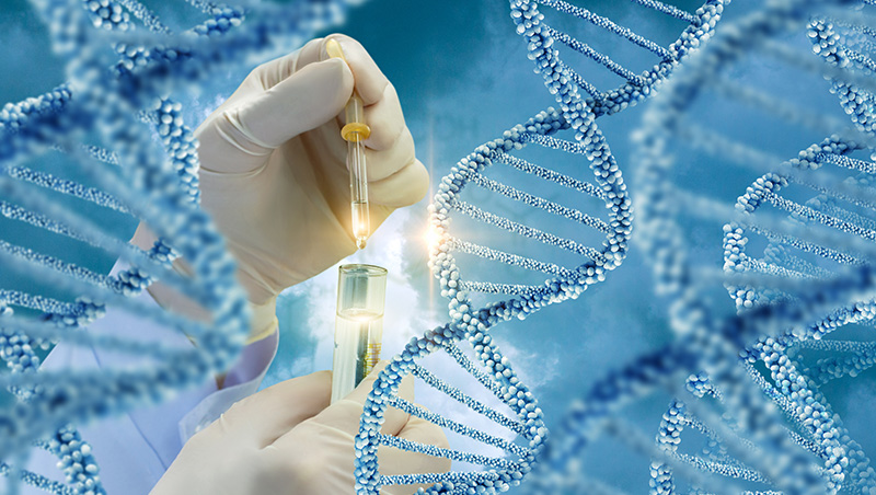 Genetic Counseling for Hereditary Cancers